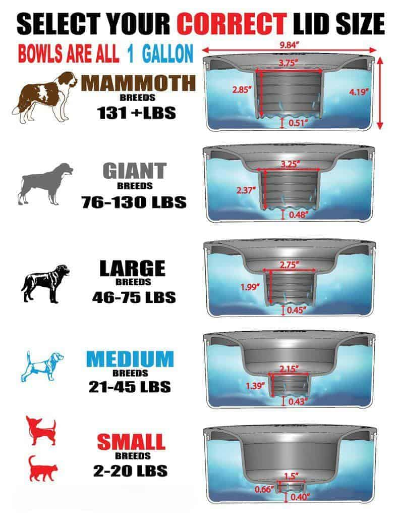 size-chart-bowl-for-all-dogs