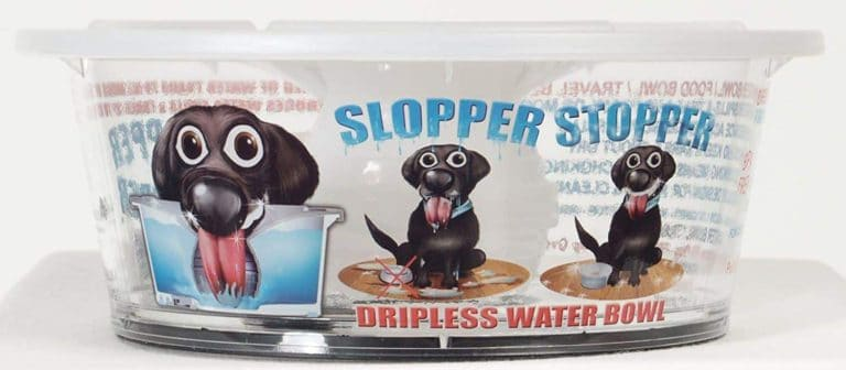 Dripless Water Bowl