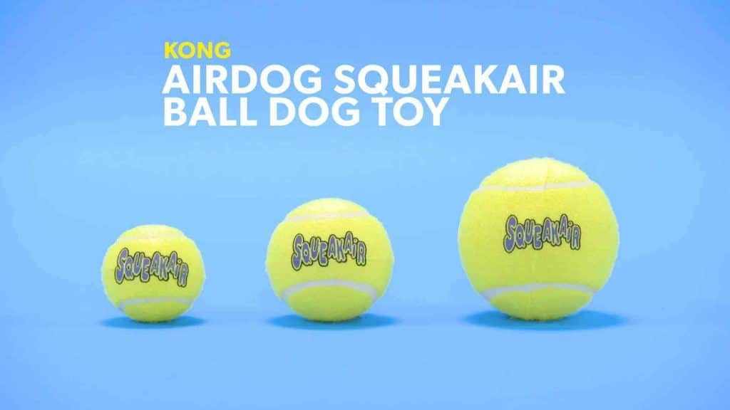a tennis ball works like a pacifier for anxious dogs