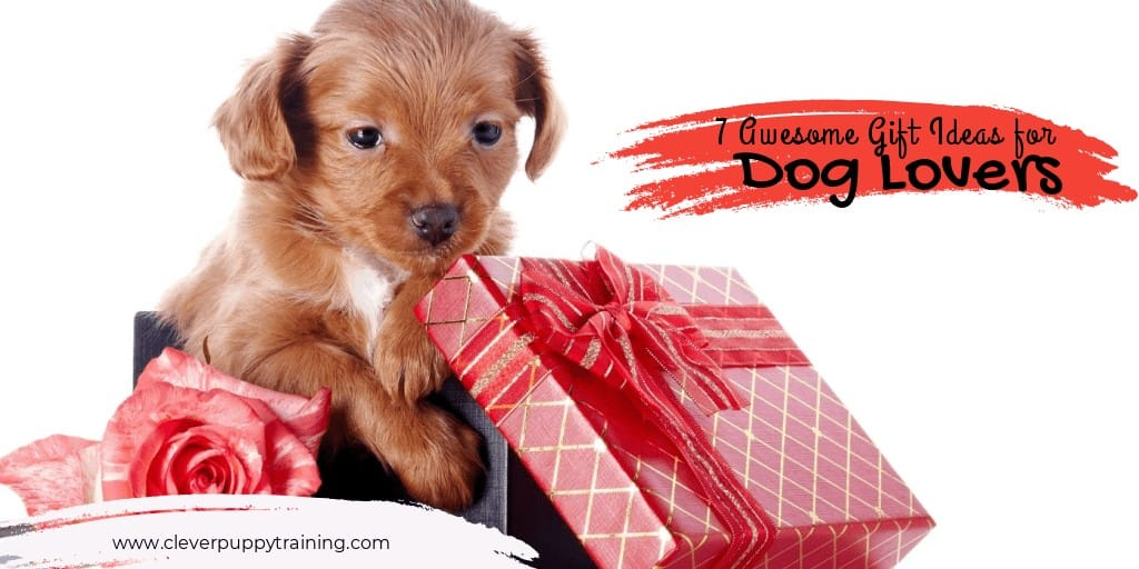 Gift-Ideas-for-Dog-Lovers