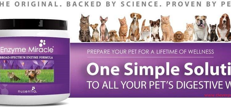 pet-balance-enzyme-miracle