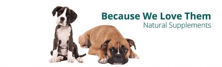 PetVitality Pro 4 Digestive Aids Suplement