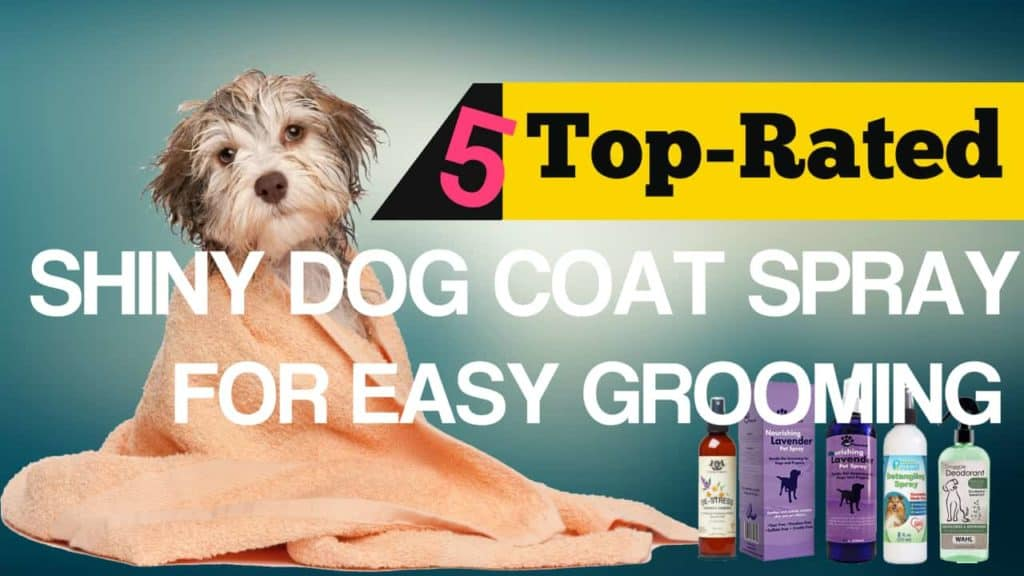 Shiny Dog Coat Spray