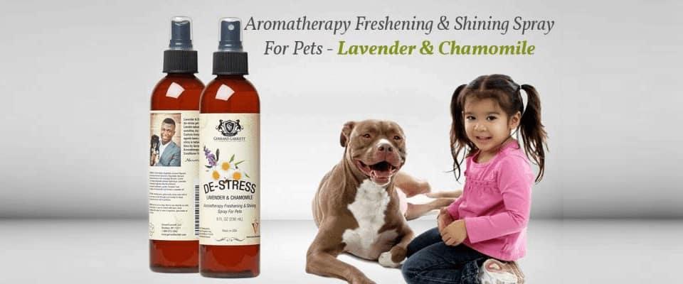 aromatherapy spray for dog