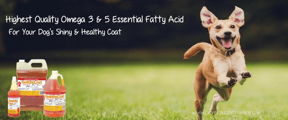 healthycoat omega fatty acid