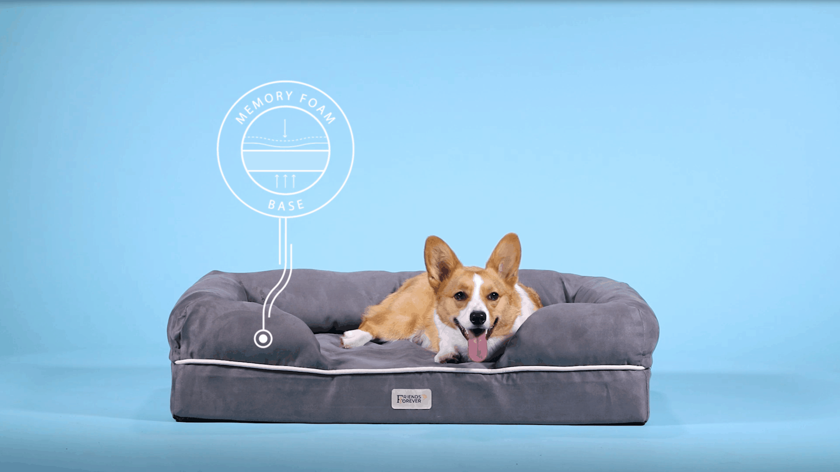best orthopedic dog bed for small breed