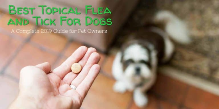 Best Topical Flea and Tick For Dogs