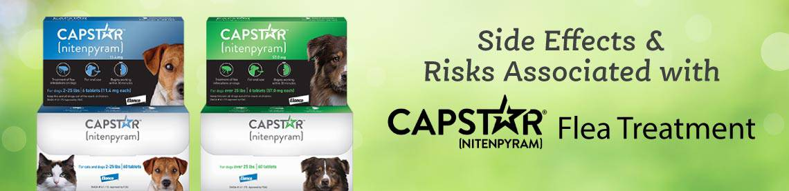 capstar-side-effect