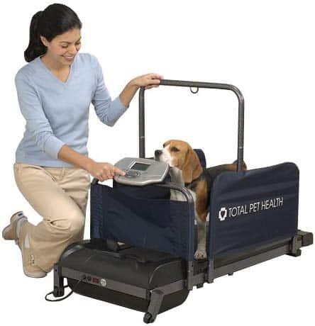 Total pet health treadmill
