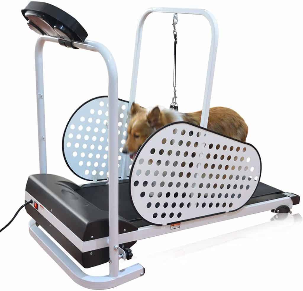 shelandy dog treadmill