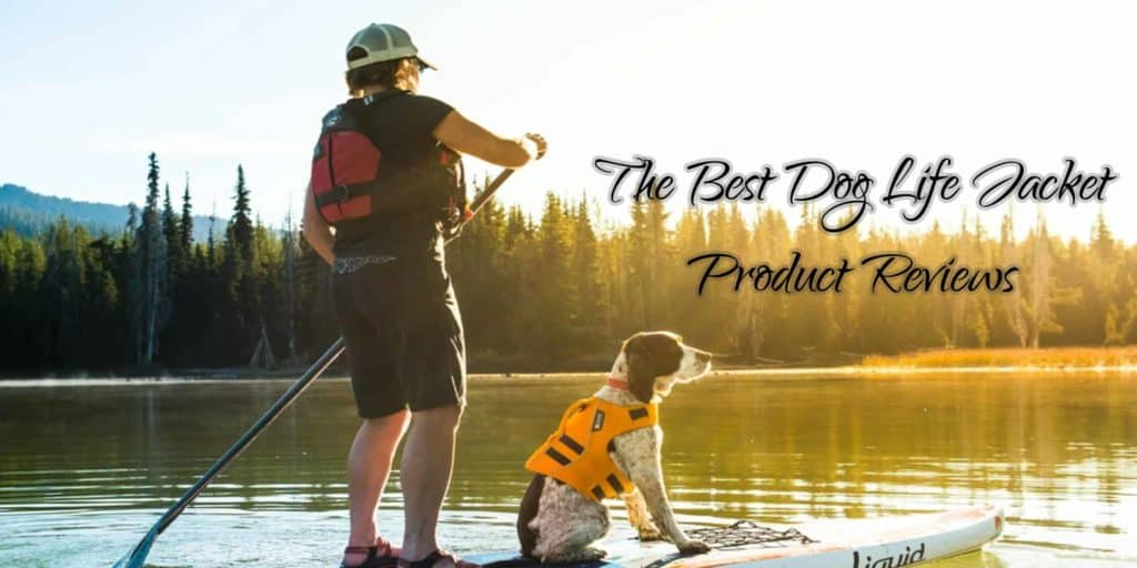 the-best-dog-life-jackets