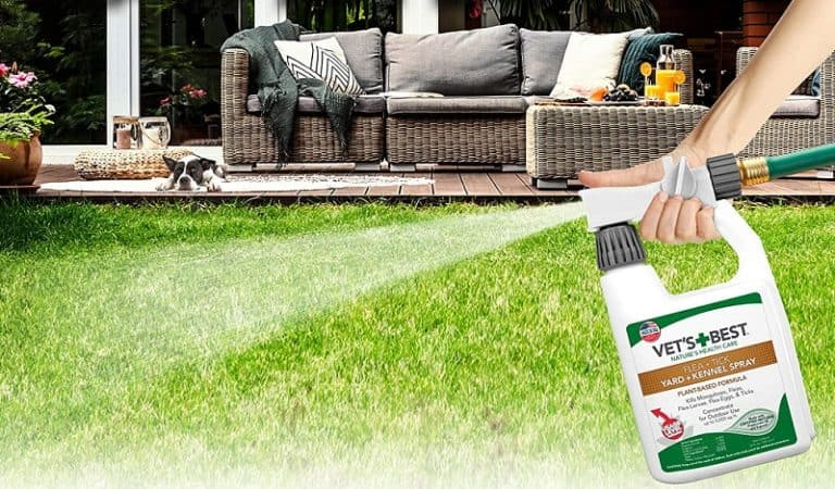 Best Yard Spray for Fleas and Ticks That Are Safe for Pets