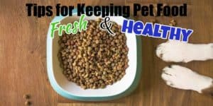 Keeping-Pet-Food-Fresh