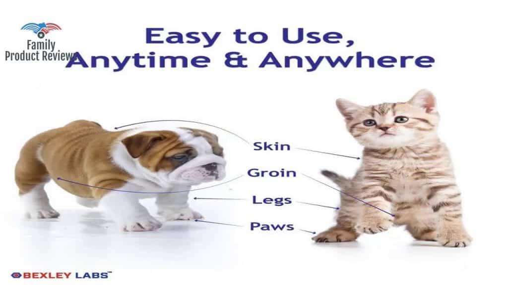 Medicated Chlorhexidine Spray for Dogs