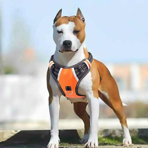 Reflective Oxford Soft Vest for Large Dogs