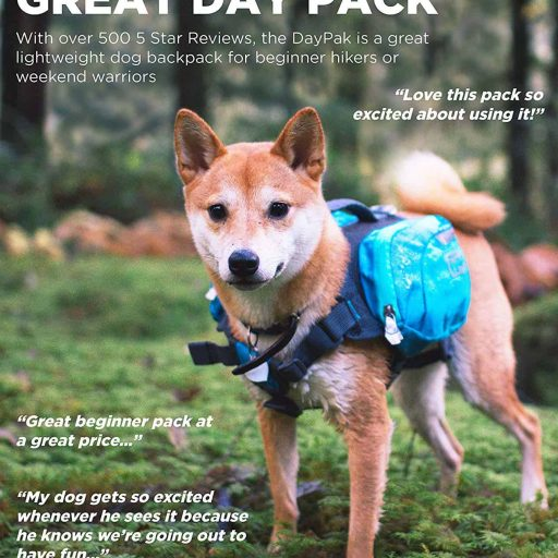 Backpack Hiking Gear For Dogs