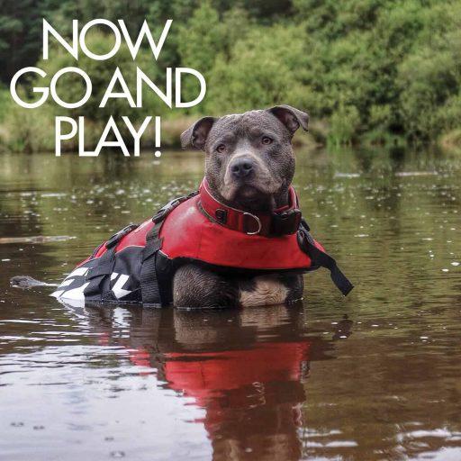 EzyDog Doggy Flotation Device