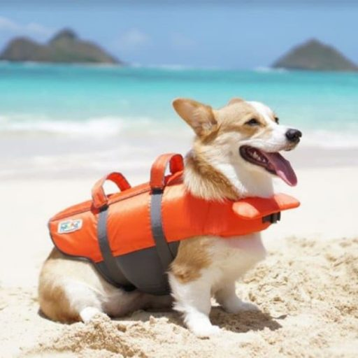 Outward Hound - Dog Life Jacket