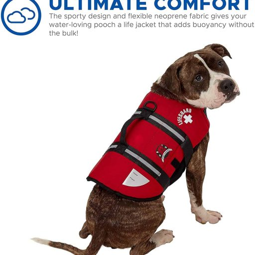 Paws Aboard Dog Life vest for swimming