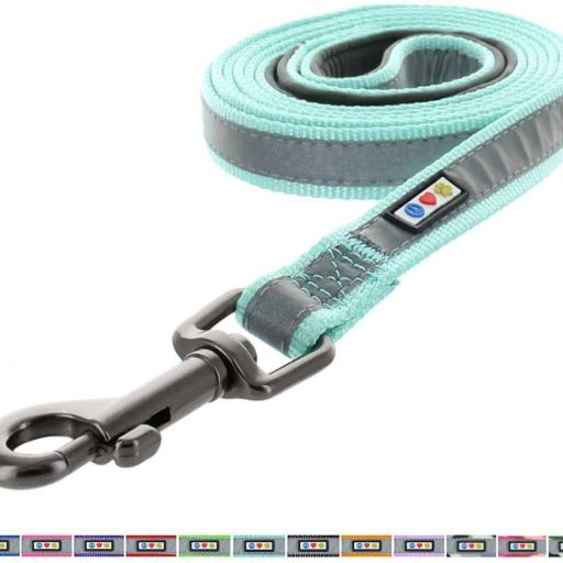 Pawtitas Reflective Dog Leash