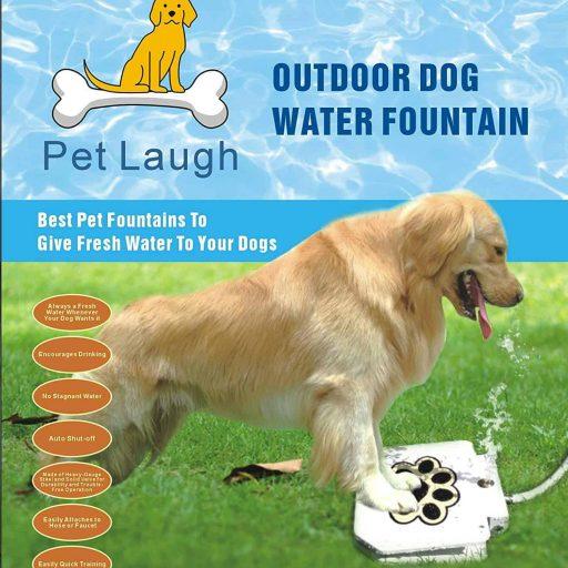 dog-waterer-step-on