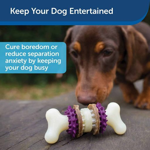 Bristle Bone Chew Toy for Dogs