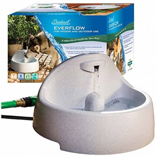 PetSafe Drinkwell Everflow Indoor/Outdoor Dog and Cat Water Fountain