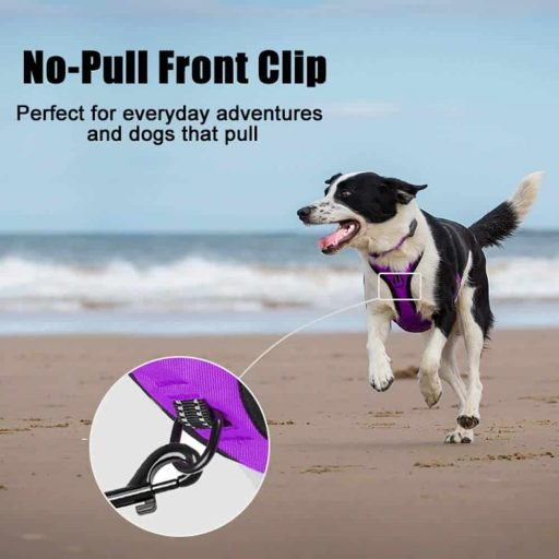 PoyPet No Pull Reflective Vest Harness