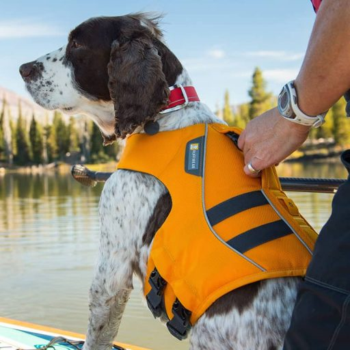 ruffwear-floating-life-vest-for-dogs