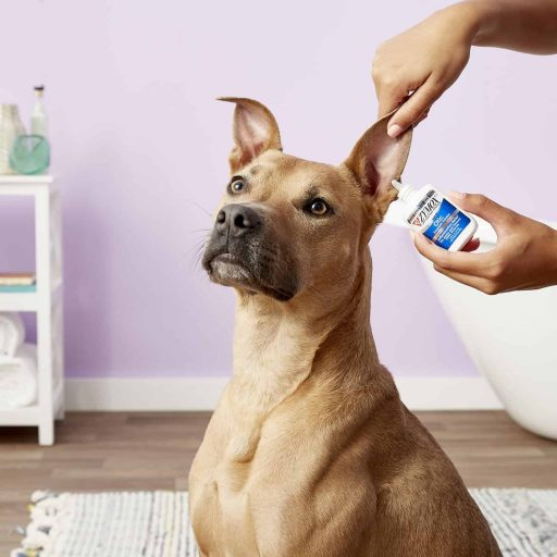 Pet Ear Treatment with Hydrocortisone